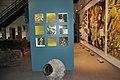 Pressoir et jarres pour l'huile d'olive à l'Éco-Musée de Volx.jpg