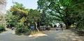 Primary School and Library Complex - Ramakrishna Mission Ashrama - Sargachi - Murshidabad 2014-11-11 8346-8348.TIF