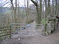 Private Drive by the Offas Dyke Long Distance Path - geograph.org.uk - 358694.jpg