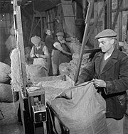 Producing Your Sugar- the Growing and Processing of Sugar Beet, Britain, 1942 D10939.jpg