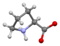Proline-from-xtal-3D-bs-17-view-B.png