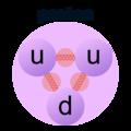 Proton diagram.png