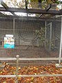 Ptaszarnia w Parku Miejskim w Kielcach (7) (jw14).JPG