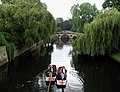 Punting on the River Cam - geograph.org.uk - 222149.jpg