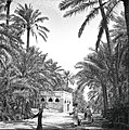 Qatif-Awamia old road.jpg