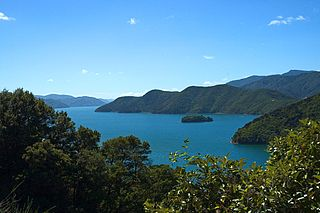 part of Marlborough Sounds, in New Zealand
