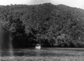 Queensland State Archives 1280 Graham Range Russell River NQ c 1935.png