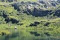 Réserve Naturelle de Passy - panoramio (32).jpg