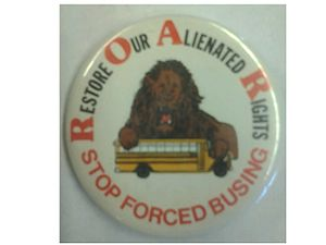 Restore Our Alienated Rights - R.O.A.R. Pin