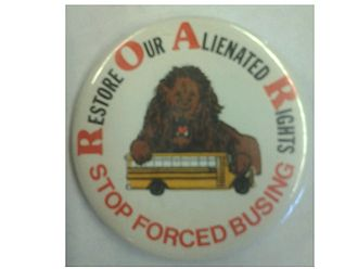 Restore Our Alienated Rights (ROAR) - R.O.A.R. Pin