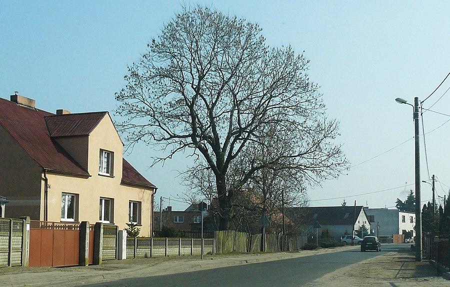 Radzewo, Greater Poland Voivodeship