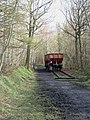 Railway wagons, Chopwell Wood - geograph.org.uk - 761057.jpg