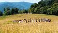 Rainbow Gathering 2000, Rumänien.jpg