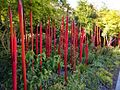 Red Garden of dreams.jpg