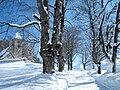 Remigius Winter 2009.JPG