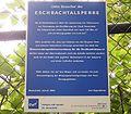 Remscheid - Eschbachtalsperre 13 ies.jpg