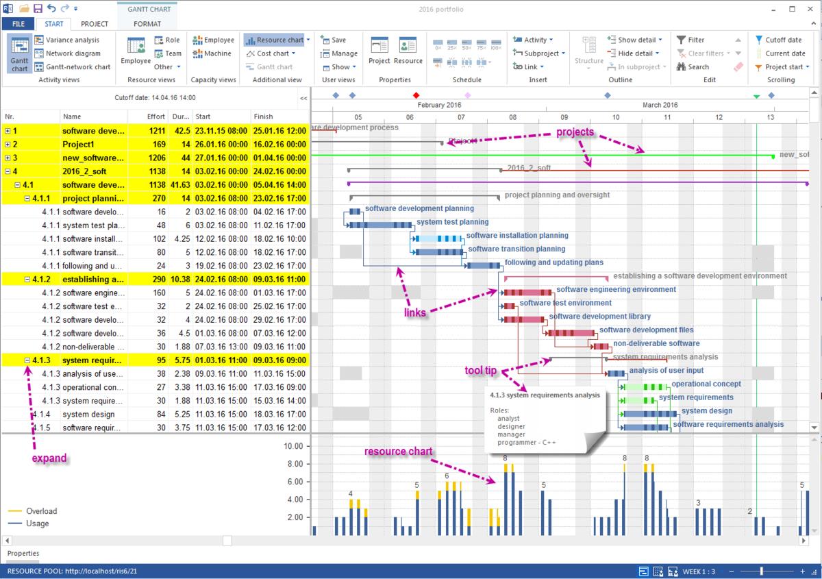 Project Management: Rillsoft Project