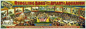 "Ringling Brothers circus poster - ""aviary..."