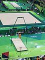 Rio 2016 Olympic artistic gymnastics qualification men (29061943141).jpg