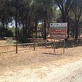 Riserva naturale orientata Bosco di Santo Pietro 02.jpg