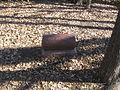 Ritchie Cemetery IMG 5286.JPG