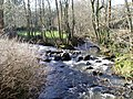 River Corris flowing into the Clywedog. - geograph.org.uk - 326996.jpg