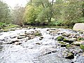 River Dart near Staverton - geograph.org.uk - 1037881.jpg