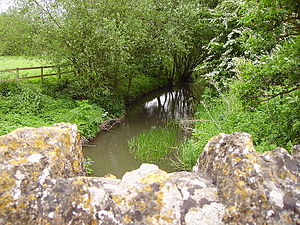 River Ock - The River Ock heads towards Abingdon, from the bridge at Charney Bassett