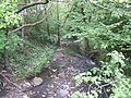 River Stour downstream of Hayseech - geograph.org.uk - 806613.jpg