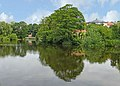 River Wharfe, Wetherby (Taken by Flickr user 6th July 2014).jpg