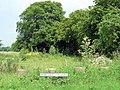 Road verge - geograph.org.uk - 454429.jpg