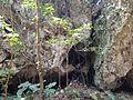 Rocks in Sefa-Utaki 2.JPG