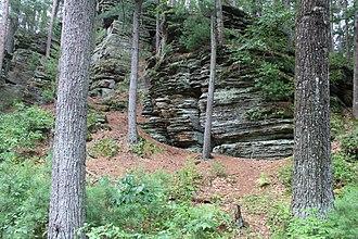 Rocky Arbor State Park - Image: Rocky Arbor stone July 2013