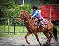 Rodeo in Panama 08.jpg
