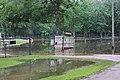Roman Forest Flood Waters - 4-19-16 (25920144003).jpg