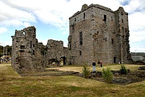 Rosyth Castle - Rosyth Castle from the south