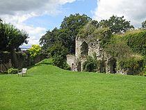 Ruins of Usk Castle - geograph.org.uk - 1426120.jpg