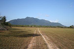 Rupununi savannah Guyana
