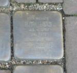Ruth Lucas Stolperstein Osterath.PNG