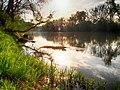 Rzeka San, miejscowość Krasiczyn, pow. przemyski.jpg
