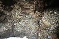 S of Mt Jackson mixed mafic-felsic breccia with andesite net-vein dyke 4.jpg