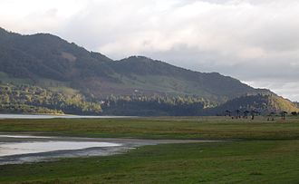 Muisca agriculture - The Bogotá savanna, location of the agricultural fields of the Muisca