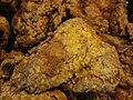 Safeway Signature Cafe fried chicken 1.JPG