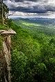 Sai Thong National Park (3).jpg