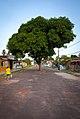 Salvaterra, Pará, Brasil - 2013.10.15 (14).jpg