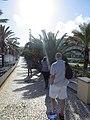 Santa Cruz - Madeira, 2012-10-24 (17).jpg