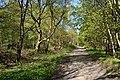 Schleswig-Holstein, Fockbek, Naturschutzgebiet Fockbeker Moor NIK 1626.jpg