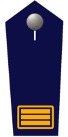 Branddirektor/-in