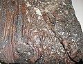 Scoriaceous basalt (Ice Springs Basalt, Holocene, 4 ka to 660 a; southeastern Ice Springs Volcanic Field, eastern Millard County, western Utah, USA) 1 (15068428317).jpg