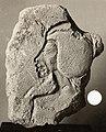 Sculptor's Trial Piece showing Upper Part of a Figure with Uraeus MET 22.2.11.jpeg